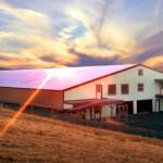 Gregg Arena 001