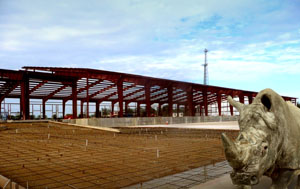 Steel warehouse going up in Texas.