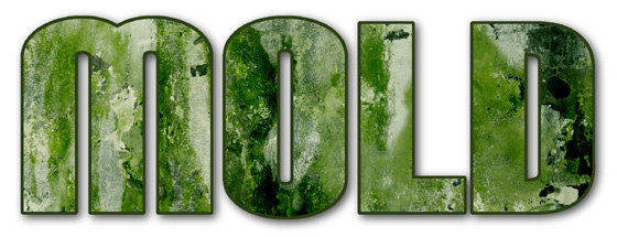 "The word ""mold"" covered in nasty dripping green mold"