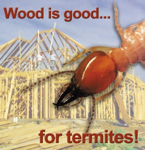Wood structure under construction with huge termite in the foreground and the heading: Wood is Good for Termites!
