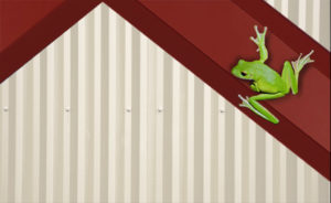 Red-iron steel framing against with a green frog on it, representing the eco-friendly nature of recycled steel.