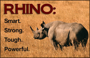 RHINO-Tough Steel Buildings