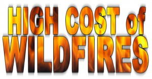 High Cost of Wildfires