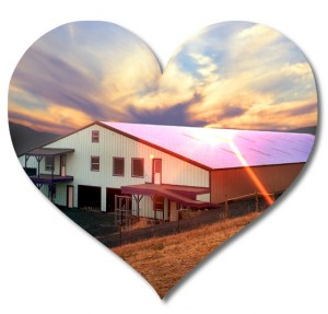 Heart-shaped photo of a huge red-roofed metal barn at sunset