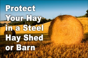 """photo of large round hay bales in field under bright blue sky with caption """"Protect your hay in a steel hay shed or barn"""""""