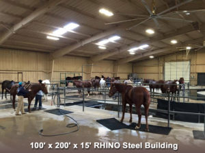 Huge equestrian rehab center includes 15' high walls and skylights.
