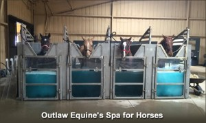 Outlaw Equine Spa