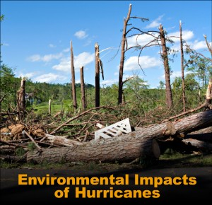 """Broken and downed trees litter the landscape with the caption """"Environmental Impacts of Hurricanes"""""""