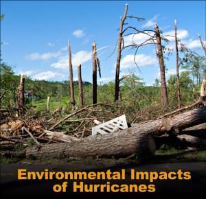Environmental Impacts of Hurricanes