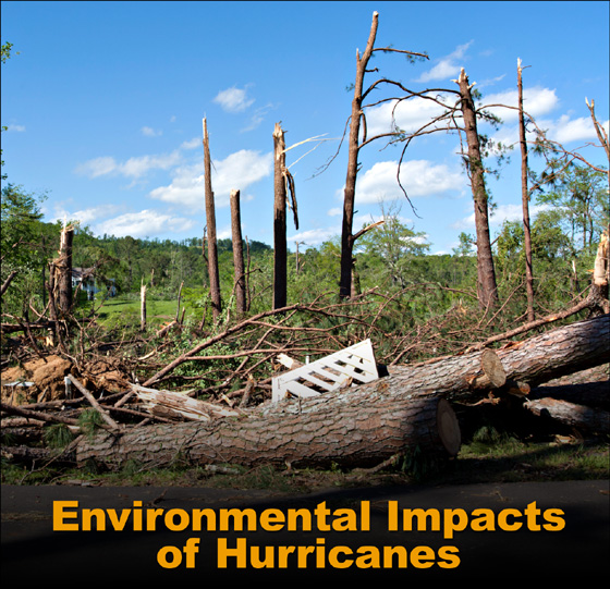 After the Storm: Environmental Impacts of Hurricanes ...