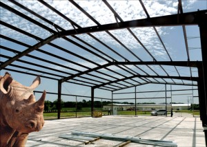 A rhino stands beneath the steel framing of an industrial warehouse under brilliant blue skies