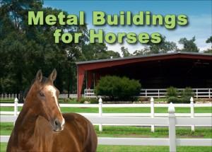 Metal Buildings for Horses