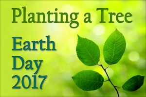 """Vibrant green leaves over sunny foliage background with the text """"planting a Tree: Eart Day 2017"""""""