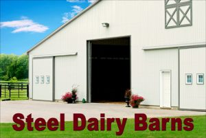 """Large white metal barn with gray trim and the text """"Steel Dairy Barns"""""""