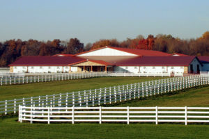 Photo of a massive horse stable built with a RHINO pre-engineered steel building.