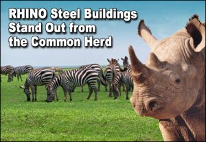 "A herd of zebras grazes behind a rhino with the headline ""RHINO Steel Buildings Stand Out from the Commom Herd."""