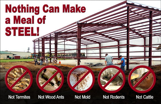 "a steel building under construction with the text ""Nothing Can Make a Meal of Steel"""