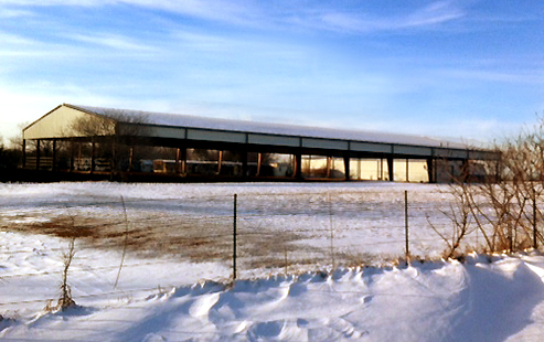 Photo of covered open-air horse arena on a snowy day.