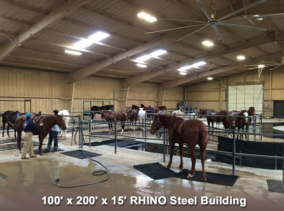 Photo of horses being treated in a RHINO building housing a equine clinic.